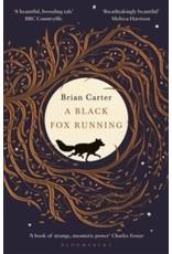 A black fox running