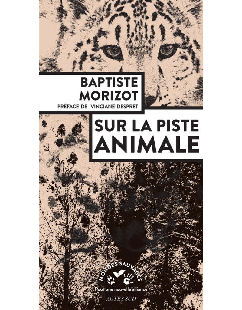 MORIZOT Baptiste Sur la piste animale