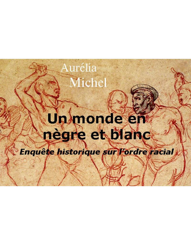 Un monde en nègre et blanc: enquête historique sur l'ordre racial