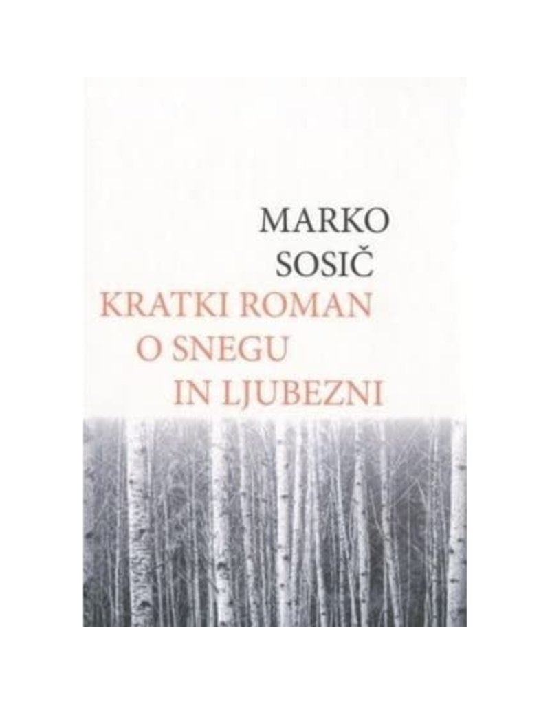 Kratki roman o snegu in ljubezni