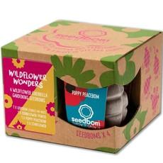 Kabloom Bloemengranatenset 'Wildflower Wonders'