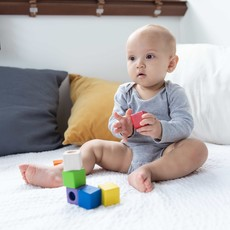 Plan Toys Activity blocks
