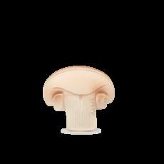 Oli & Carol Manolo the Mushroom