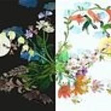 Novelle Het briljante bloemenboek