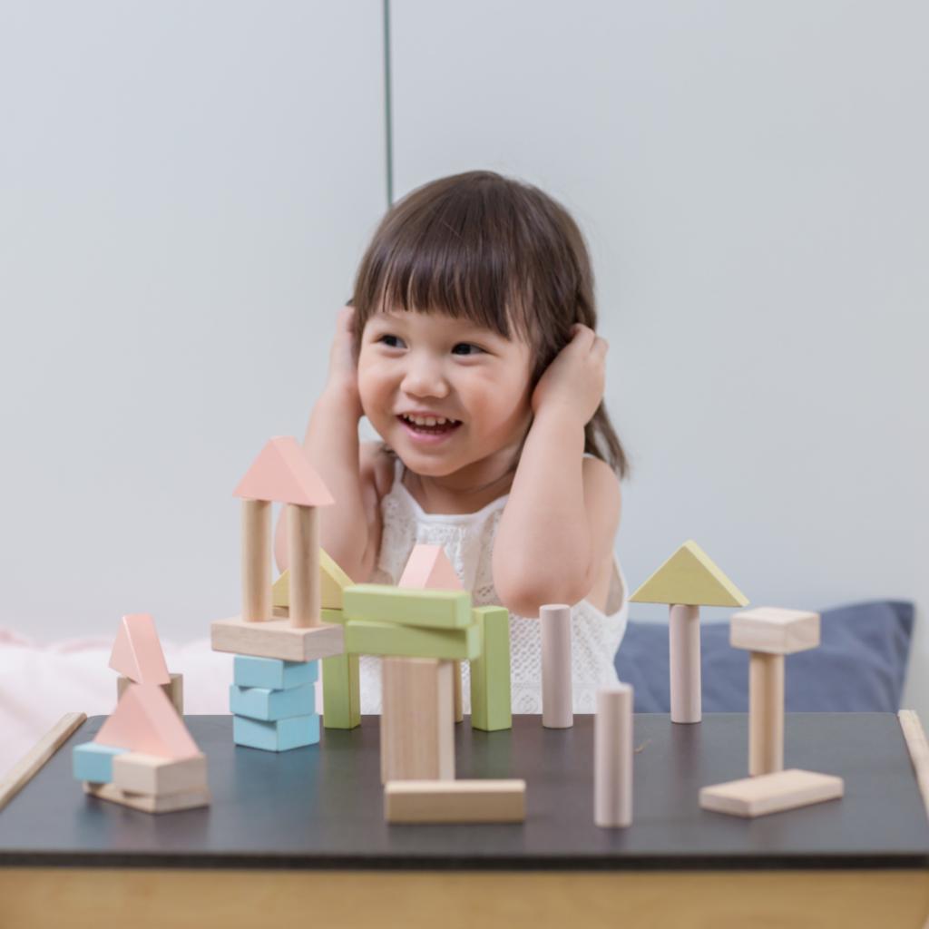 Plan Toys Bouwblokken pastel (40st)