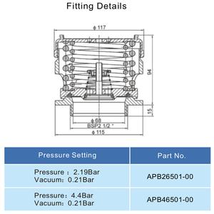 "2,5"" BSP veiligheidsventiel, druk 4,4 bar, vacuum 0,21 bar"