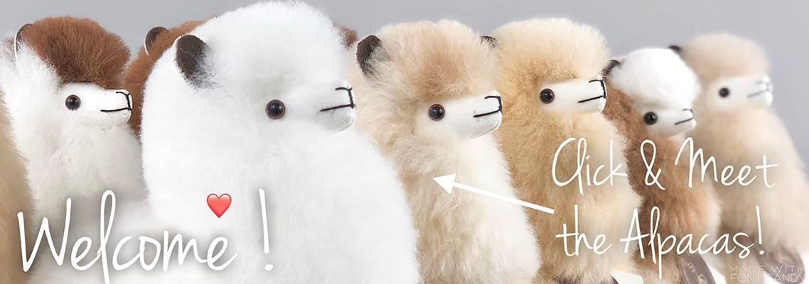 Inkari Alpaca's