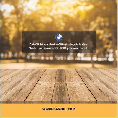 Canoil CBD informatie boekje Engels (10 Stuks)