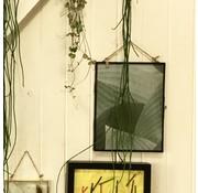 Nordal fotolijst hangend - koper, glas - 26 x 20 cm