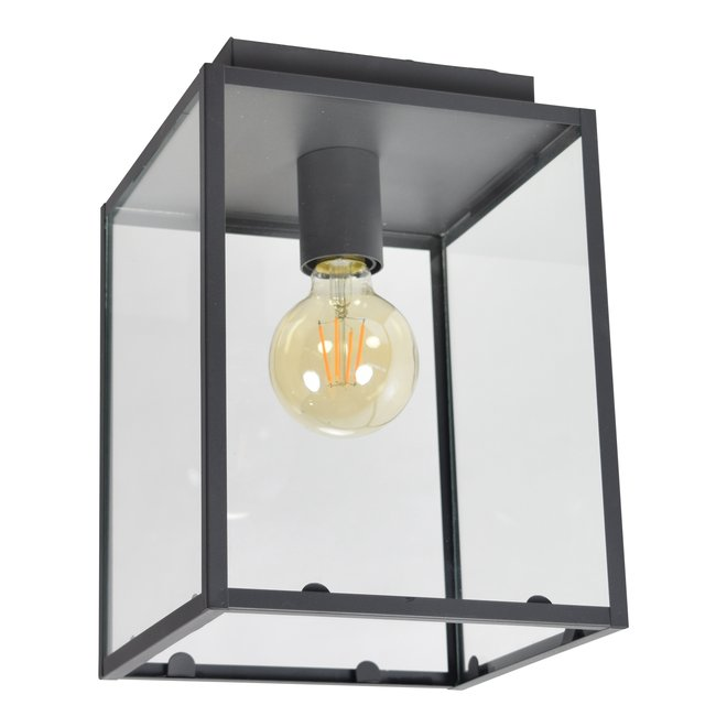 Plafondlamp Sky 21x21x27 Zwart