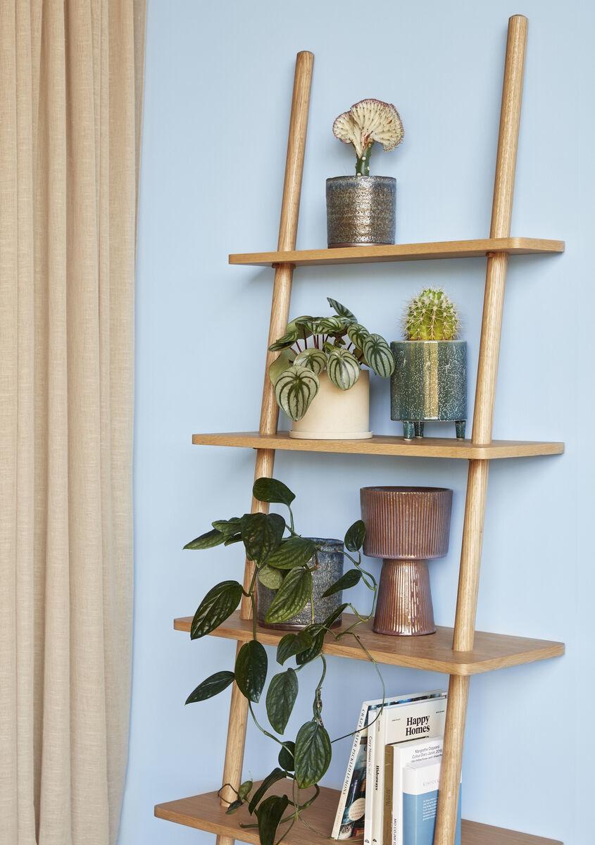 Hubsch Display ladder, eik, natuur, FSC