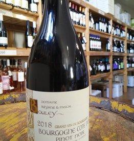 2018 Domaine Bouley Bourgogne Côte d'Or Pinot Noir