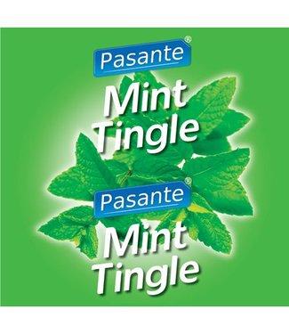 Pasante Mint Flavour Condooms 144 stuks