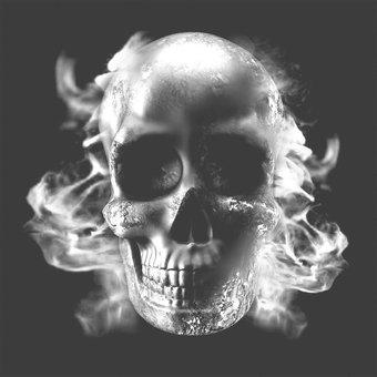 Skulls Doodskop briketten 3 stuks