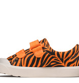 Clarks City Bright Tiger Print Infant