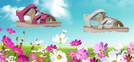 Clarks Crown Flower