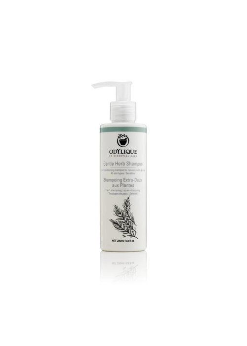 Odylique Shampoo - Gentle Herb: Organic 200ml