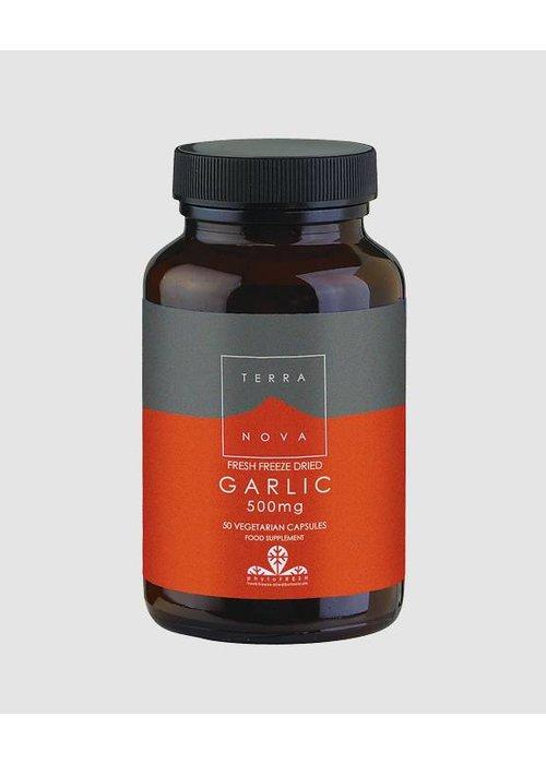 Terranova Garlic