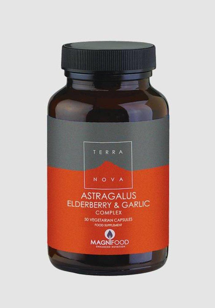 Astragalus, Elderberry and Garlic