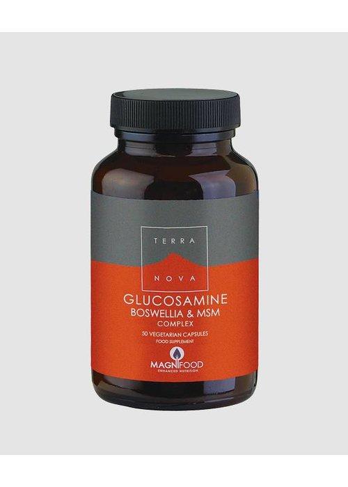 Terranova Glucosamine, Boswellia and MSM