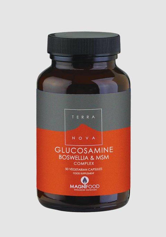 Glucosamine, Boswellia and MSM