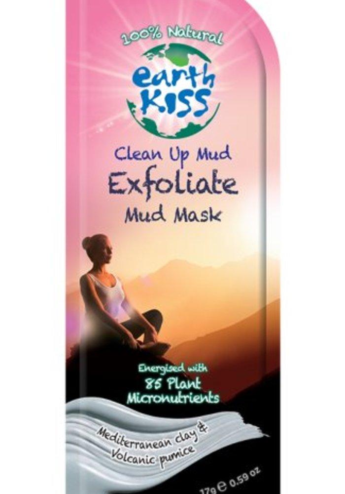 Face Mask: Clean Up Mud Exfoliate