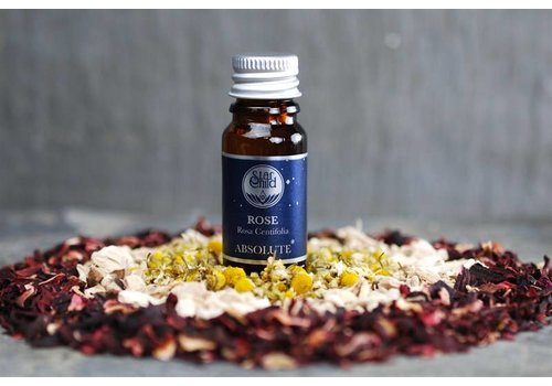 Star Child Essential Oil - Rose Absolute