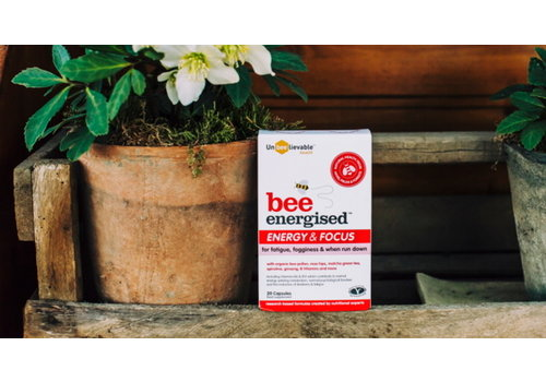 UnBeelievable Bee Energised