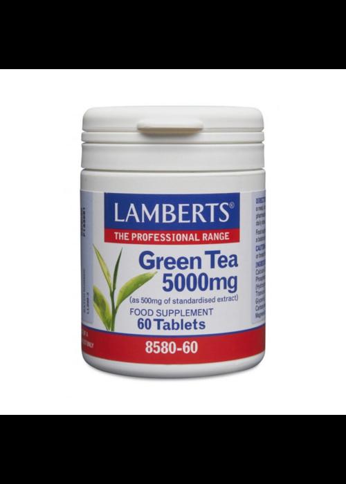 Lamberts Green Tea 5000 mg