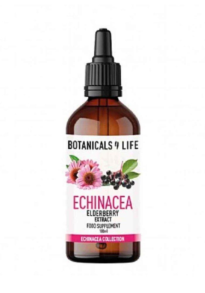 Tincture: Echinacea & Elderberry