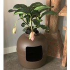 RHRQuality Flower XXL Cat Litter Box Brown