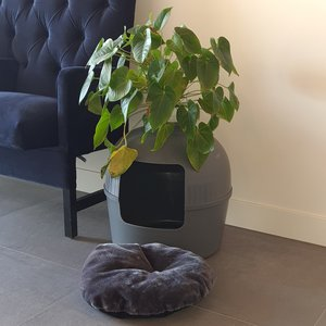 RHRQuality Flower XXL Litter Box Grey + Cushion (in 3 variants)