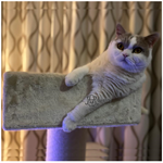 Cat Tree replacement parts per RHRQuality model