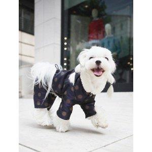 Puppy Angel Dotty Neval padded bodysuit