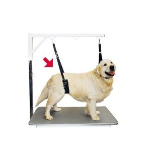 ShowTech Show Tech Comfort Buikband voor Honden