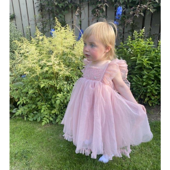 Rasberry Tulle Butterfly Dress