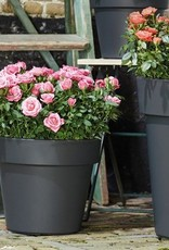 Elho Green Basics Top Planter Hoog