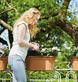 Elho Green Basics Flower Bridge