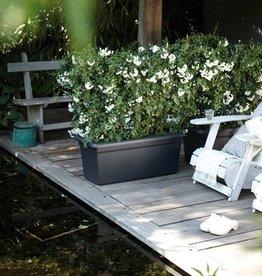 Elho Green Basics Garden xxl