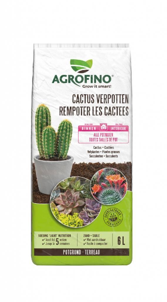 Greenyard Cactus Verpotten 6L