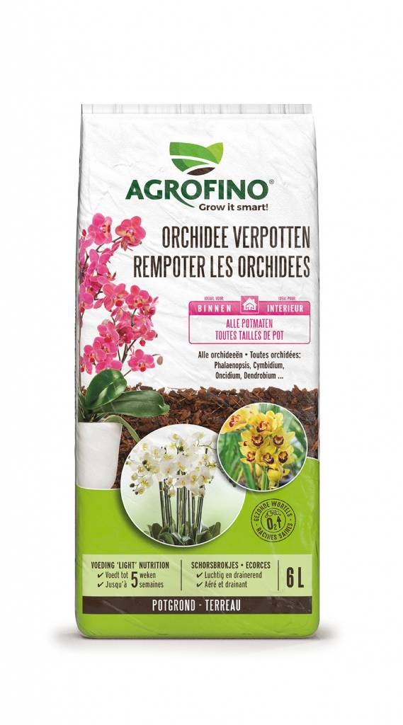 Greenyard Orchidee Verpotten 6L