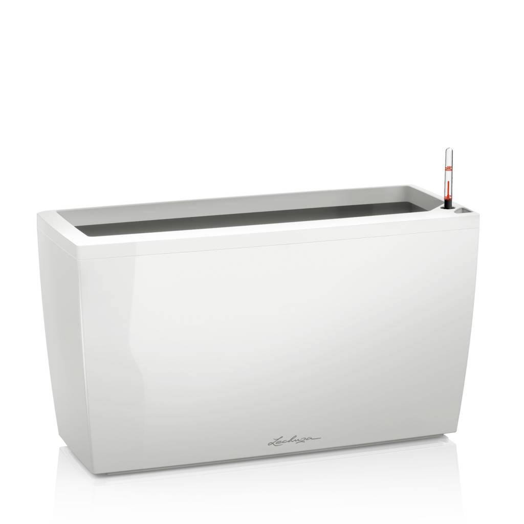 Lechuza Cararo Premium  75x30x40 cm All-in-one-set