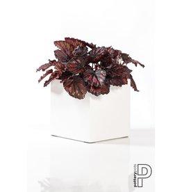 Pottery Pots Fleur