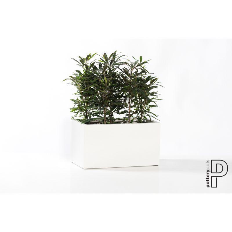 PotteryPots 2021 Mini Jort