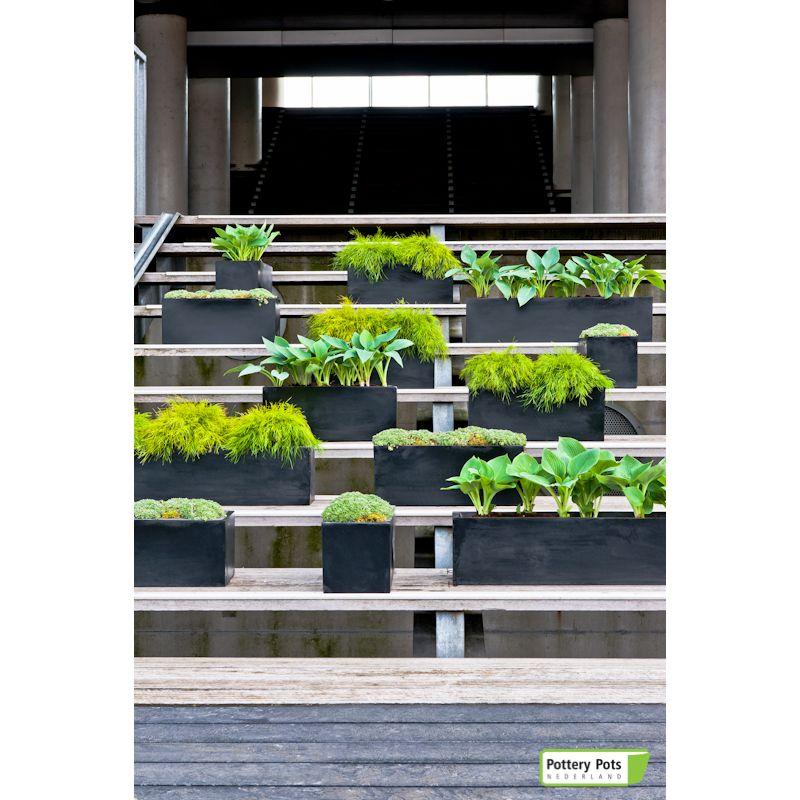 PotteryPots 2021 Balcony
