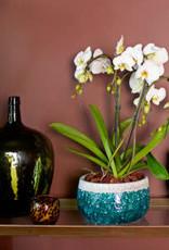 Artevasi Artevasi - Iris pot