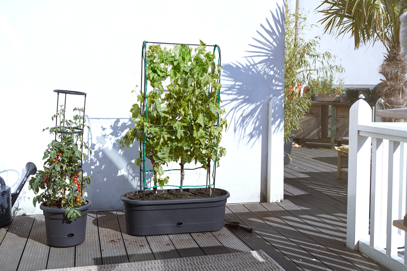 Elho Green Basics Veggie Wall 80 cm