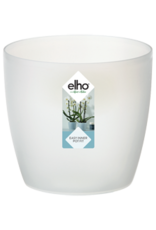 Elho2021 Brussels Orchidee