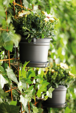 Elho2021 Green Basics muur potholder all in 1 ( 20x18cm)