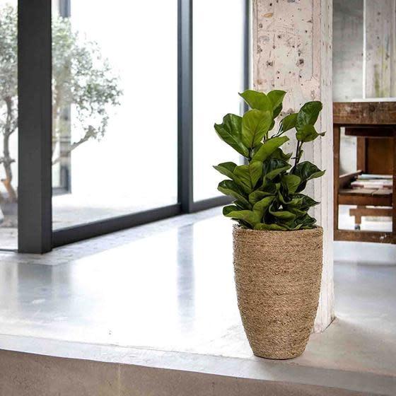 Pottery Pots Ben Straw Grass